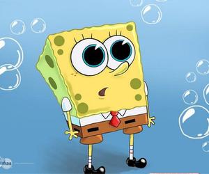bob esponja, spongebob, and bob image