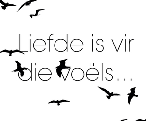 afrikaans, liefde, and quotes image