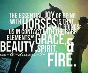 <3, horses, and love image