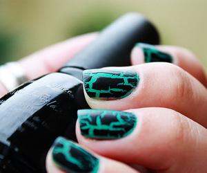 nails, nail polish, and green image