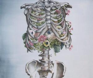 human body, medicine, and amazing image