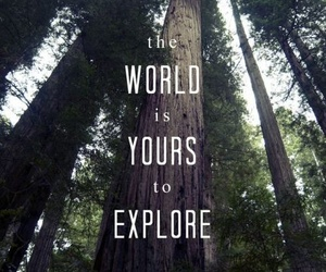 explore, world, and quote image