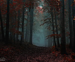 dark, landscape, and photography image