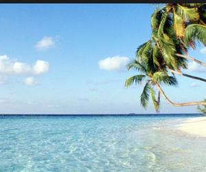 beach, water, and sun image