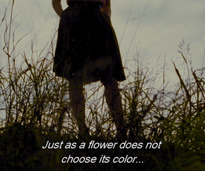 color, flowers, and quote image