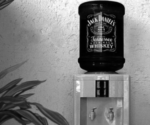 jack daniels, drink, and whiskey image