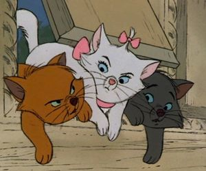 cat, disney, and aristocats image