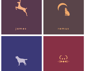 harry potter, hp, and remus image
