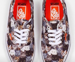 vans, cat, and shoes image