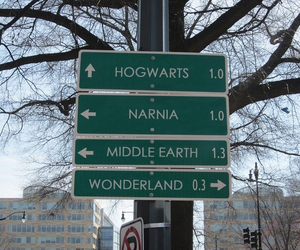 harry potter, narnia, and hogwarts image