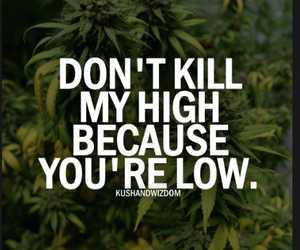 high, weed, and life image