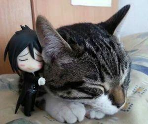 cat, kuroshitsuji, and sebastian image