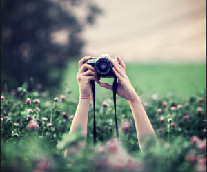 camera, photography, and spring image