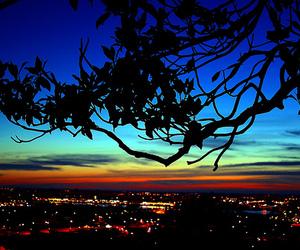 butt, city lights, and night image