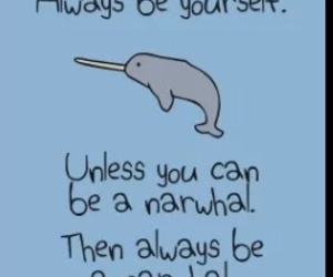 narwhals, be, and funny image