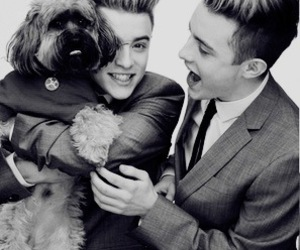 beautiful, boys, and dog image