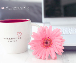 coffe, food, and girly image