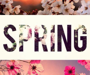 spring and flowers image