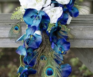 beauty, blue, and blue flowers image