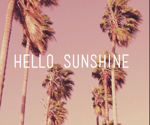summer, sunshine, and sun image