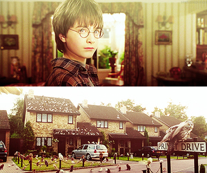 harry potter, owl, and privet drive image