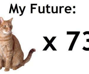cats, cool, and future image