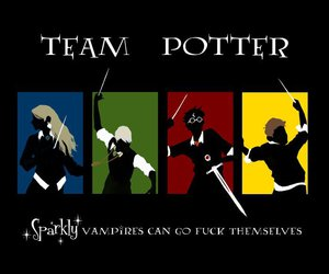 harry potter, harry, and potter image