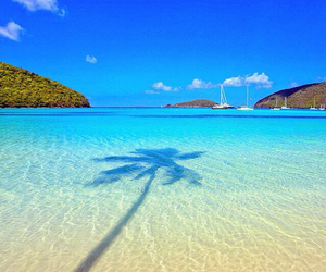 beach, ocean, and paradise image