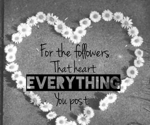 followers, heart, and thanks image