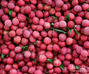 fruit, natural, and red image
