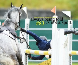 equestrian, tumblr, and horse image