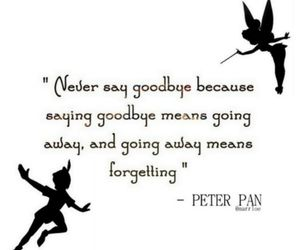 peter pan, goodbye, and beautiful image