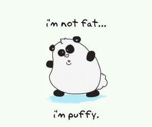panda, puffy, and cute image