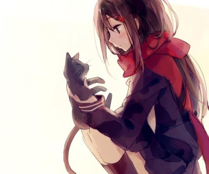 cat, girl, and pixiv image