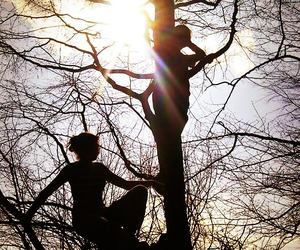 forest, free, and love! image