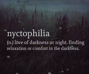 Darkness, nyctophilia, and night image