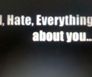 about, everything, and hate image