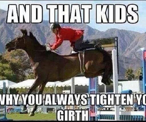 equestrian, horse, and funny image
