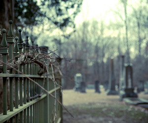 cemetery, graveyard, and spooky image