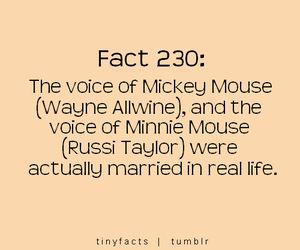 disney, fact, and married image