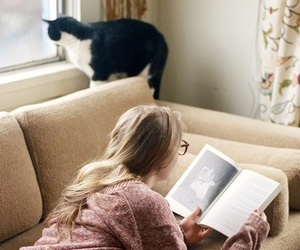book, cat, and reading image