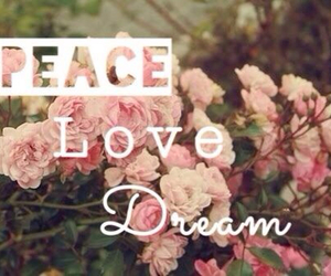 Dream, flowers, and peace image