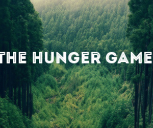 Jennifer Lawrence, the hunger games, and wood image