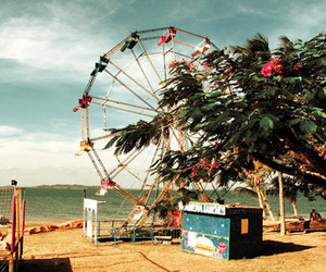 beach, ferris wheel, and summer image