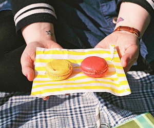oreo and picknick image