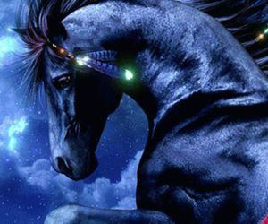 beauty, horse, and lights image