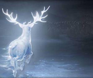 harry potter, patronus, and always image