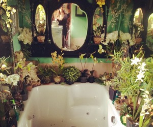 plants, bathroom, and bath image