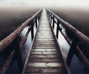 nature, fog, and wood image
