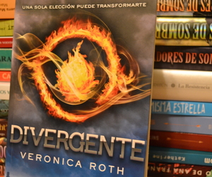 books, me, and divergent image